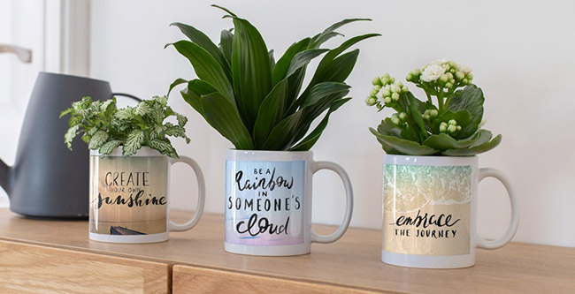 Creative Ways To Use Your Personalised Coffee Mugs Ferns N Petals Singapore