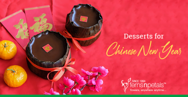 Desserts for Chinese New Year Celebration