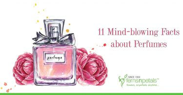 11 Mind-blowing Facts about Perfumes