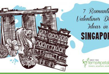 7 romantic valentines date ideas in singapore