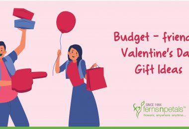 v-day gift ideas