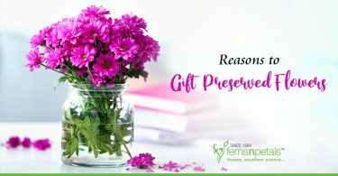 Reasons to Gift Preserved Flowers