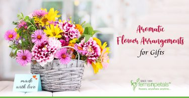 Naturally Fragrant Flowers to Give as Gifts