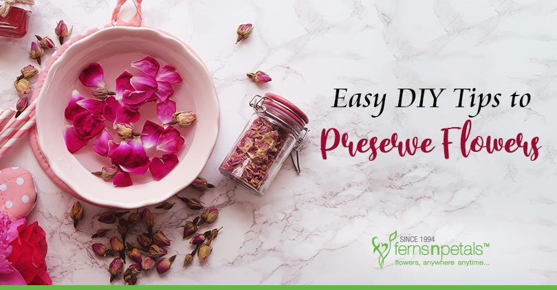 DIY Tips to Preserve Flowers