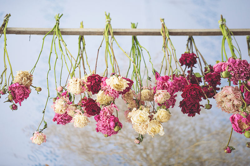 air-drying-flowers