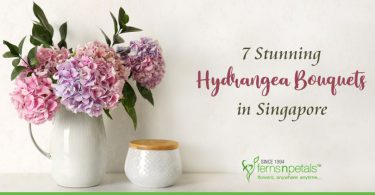 Hydrangea-Bouquets-in-Singapore