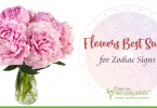 flowers best suited for zodiac