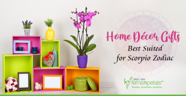 Gifts Best Suited for Scorpio